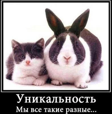 kak_sdelat_kartinky_unikalnoj2