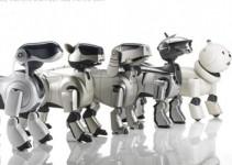 dlya_saita_fajl_robots_2