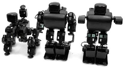 fajl_robots_dlya_saita