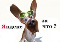 kak_vyjti_iz_pod_filtra_yandeksa
