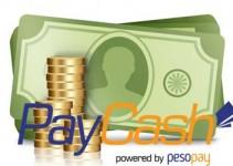 sistema_paycash