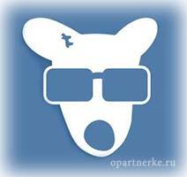 plyusy_socseti_vkontakte
