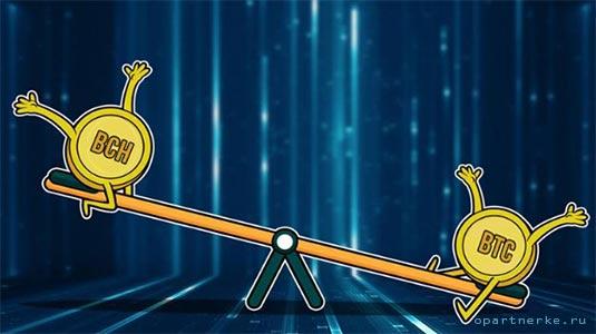 kacheli bitcoinvs bitcoin cash