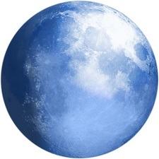 brauzer pale moon